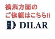 DILARlink